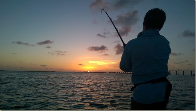 tarpon sunset